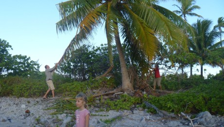 Mit allen Tricks versuchen die Crews der Alytes und der hapa na sasa an eine grüne Kokosnuss zu kommen