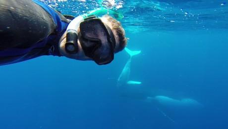 Selfie mit Buckelwal darf auf unserer Auszeit mit Kindern natürlich nicht fehlen.